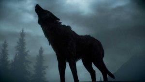Воет-собака-ночью